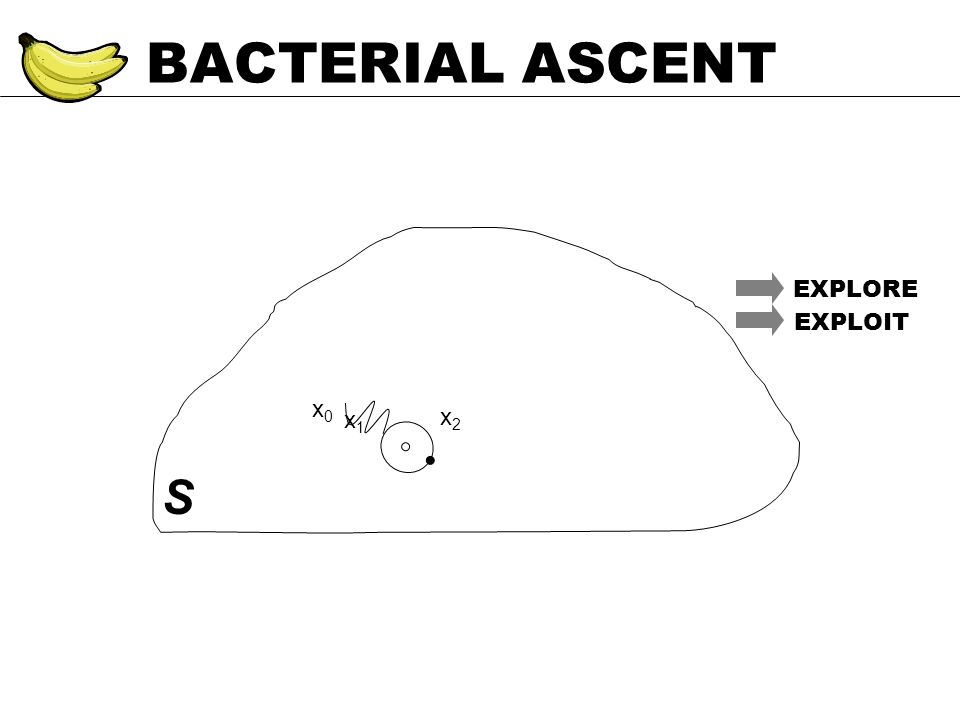 BACTERIAL ASCENT S EXPLORE EXPLOIT x0x0 x1x1 x2x2