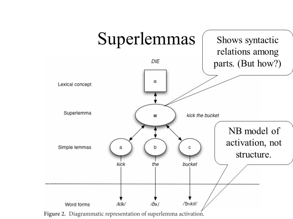 Superlemmas NB model of activation, not structure.