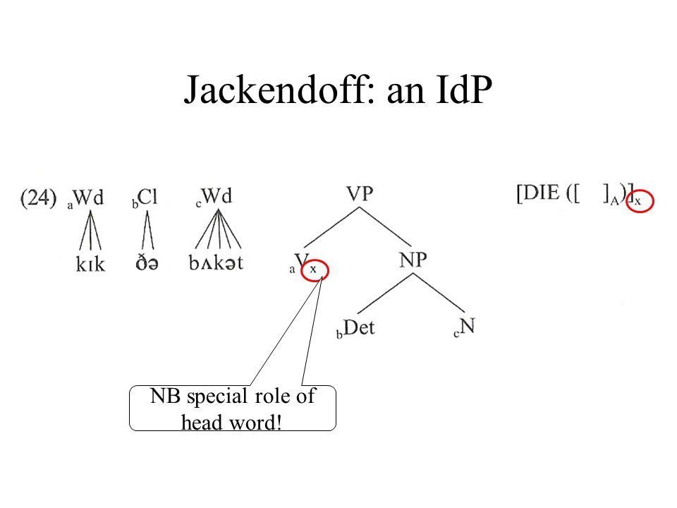 Jackendoff: an IdP NB special role of head word!