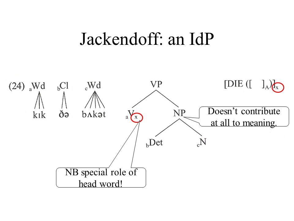 Jackendoff: an IdP NB special role of head word! Doesnt contribute at all to meaning.