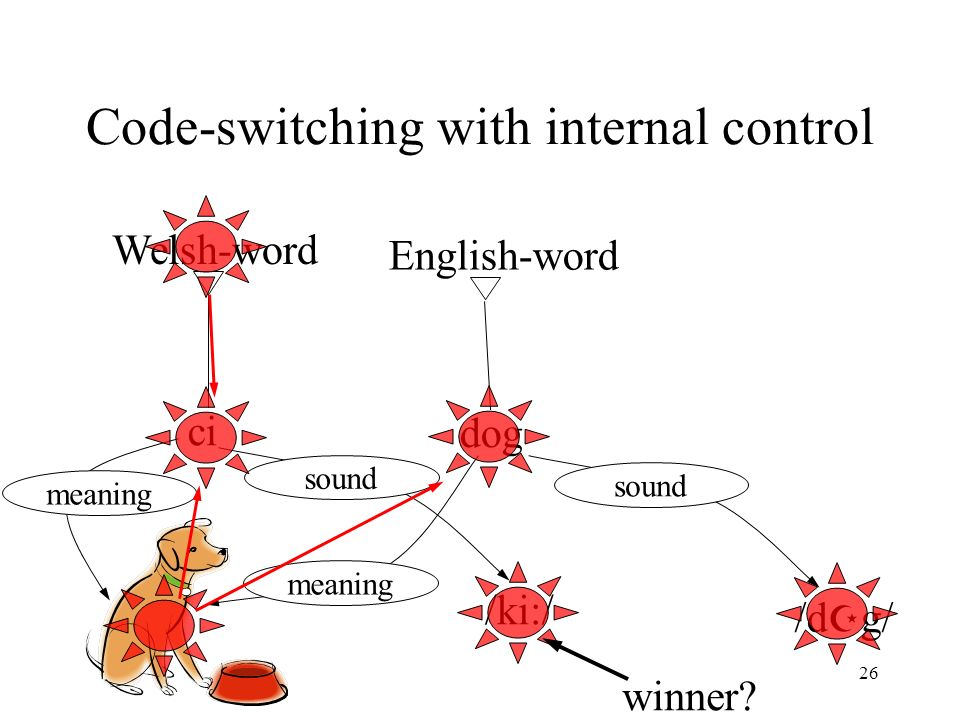 26 Code-switching with internal control ci dog Welsh-word English-word meaning /ki:/ sound /d g/ sound winner?