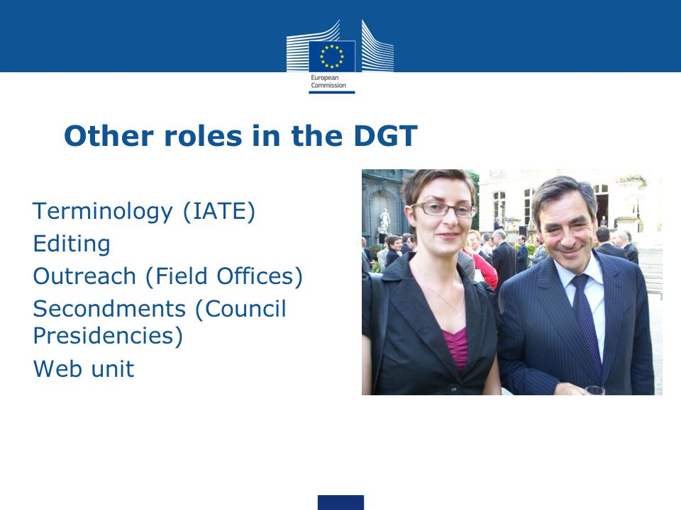 Other roles in the DGT Terminology (IATE) Editing Outreach (Field Offices) Secondments (Council Presidencies) Web unit