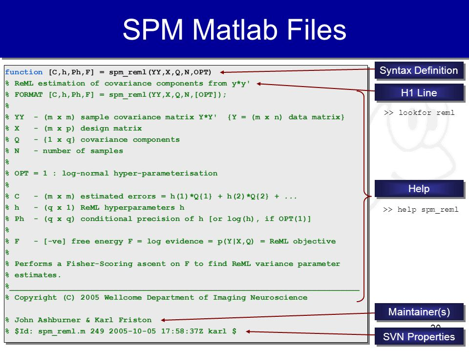 20 SPM Matlab Files function [C,h,Ph,F] = spm_reml(YY,X,Q,N,OPT) % ReML estimation of covariance components from y*y' % FORMAT [C,h,Ph,F] = spm_reml(Y