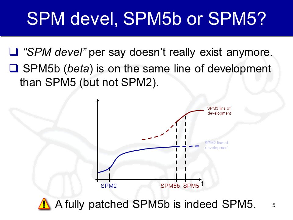 5 SPM devel, SPM5b or SPM5? SPM devel per say doesnt really exist anymore. SPM5b (beta) is on the same line of development than SPM5 (but not SPM2). A