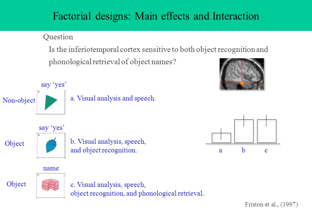 Factorial designs: Main effects and Interaction Question Is the inferiotemporal cortex sensitive to both object recognition and phonological retrieval