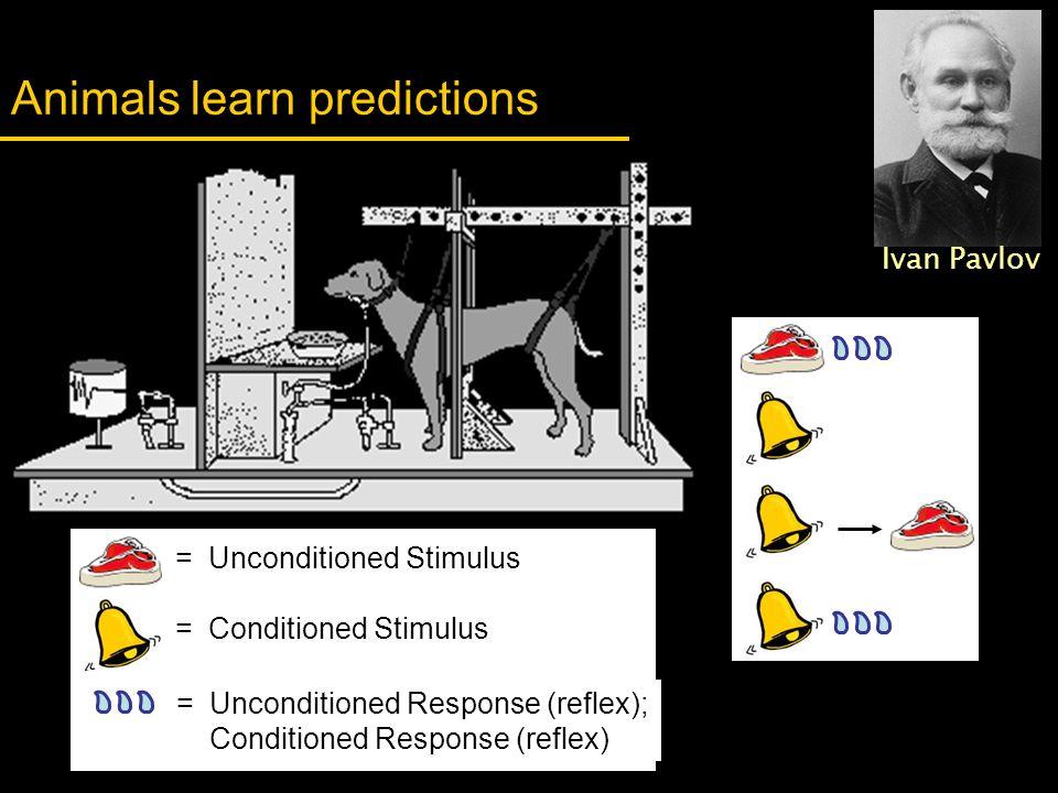 = Conditioned Stimulus = Unconditioned Stimulus = Unconditioned Response (reflex); Conditioned Response (reflex) Animals learn predictions Ivan Pavlov