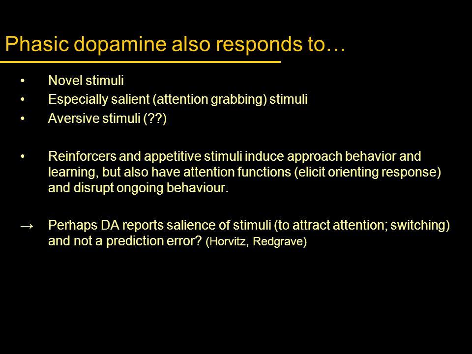Phasic dopamine also responds to… Novel stimuli Especially salient (attention grabbing) stimuli Aversive stimuli (??) Reinforcers and appetitive stimu