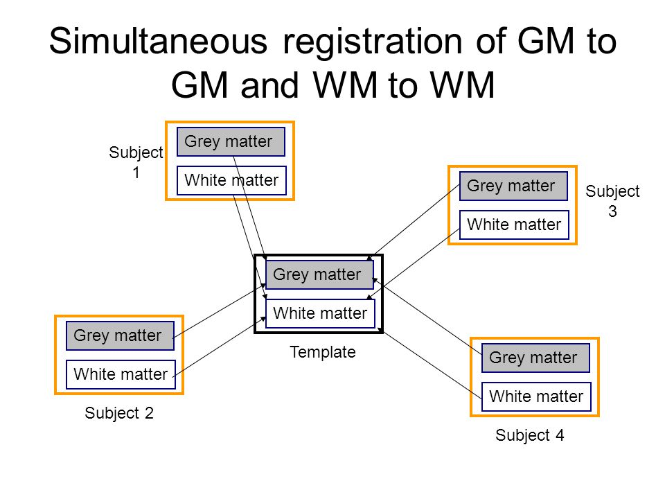 Simultaneous registration of GM to GM and WM to WM Grey matter White matter Grey matter White matter Grey matter White matter Grey matter White matter