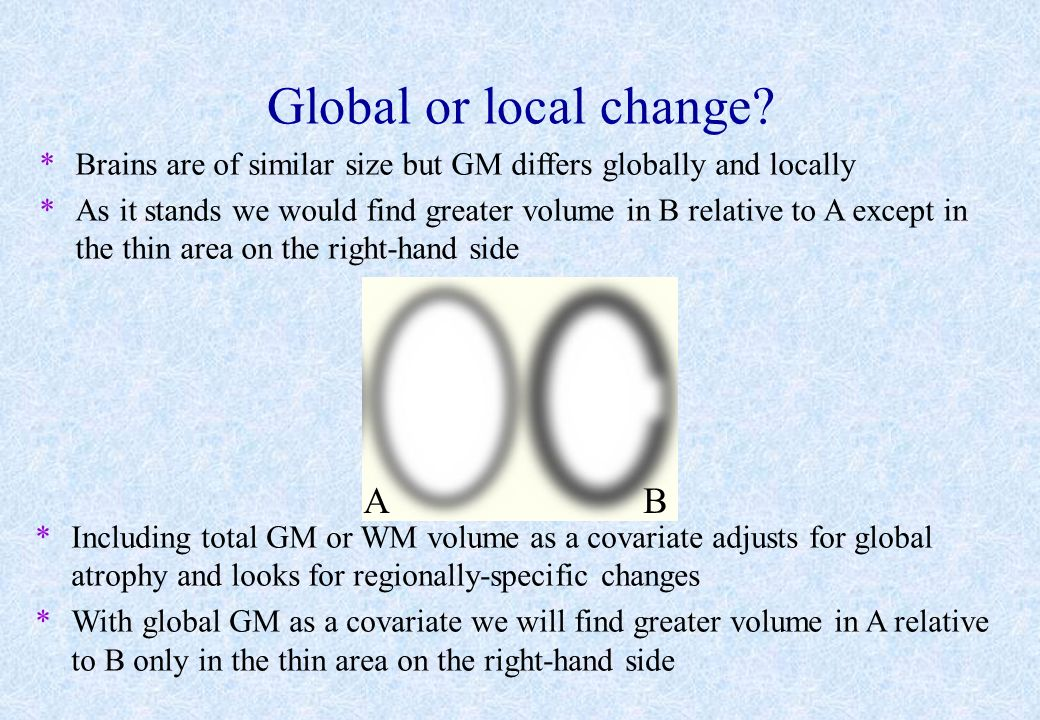 Global or local change? *Brains are of similar size but GM differs globally and locally *As it stands we would find greater volume in B relative to A
