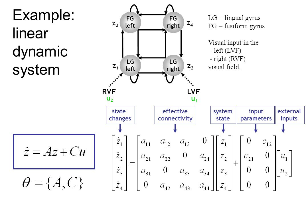 Example: linear dynamic system LG left LG right RVFLVF FG right FG left LG = lingual gyrus FG = fusiform gyrus Visual input in the - left (LVF) - righ