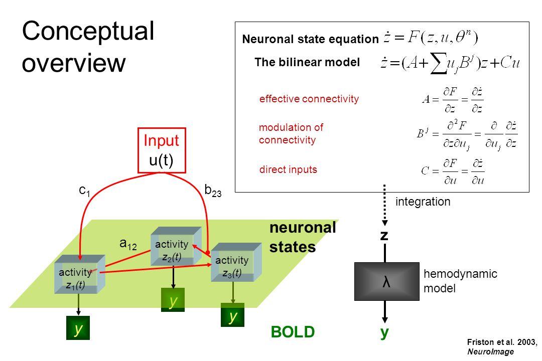 BOLD y y y hemodynamic model Input u(t) activity z 2 (t) activity z 1 (t) activity z 3 (t) effective connectivity direct inputs modulation of connecti