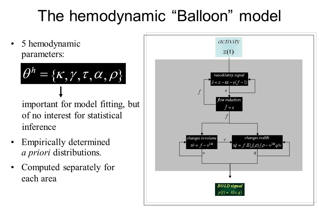 important for model fitting, but of no interest for statistical inference The hemodynamic Balloon model 5 hemodynamic parameters: Empirically determin