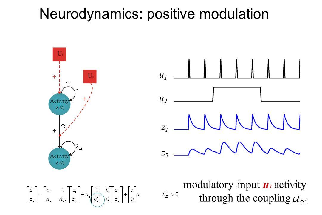 Neurodynamics: positive modulation u2u2 u1u1 z1z1 z2z2 modulatory input u 2 activity through the coupling