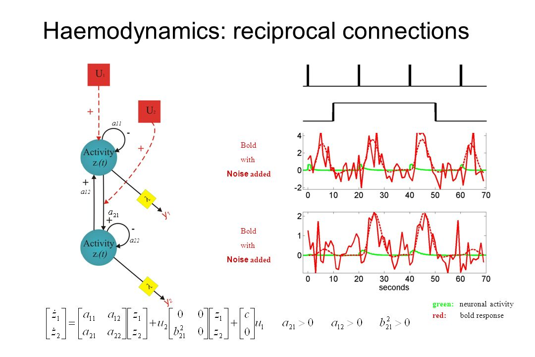 Haemodynamics: reciprocal connections Bold with Noise added Bold with Noise added a 11 a 22 a 12 green: neuronal activity red: bold response