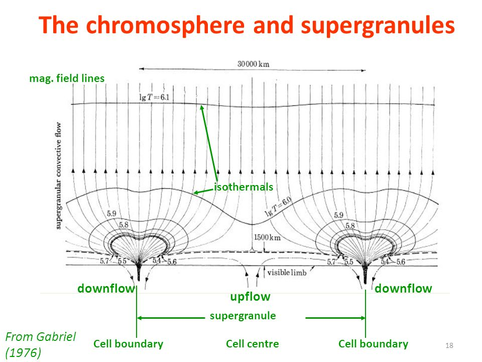 The chromosphere and supergranules supergranule upflow downflow mag. field lines isothermals Cell boundaryCell centreCell boundary From Gabriel (1976)