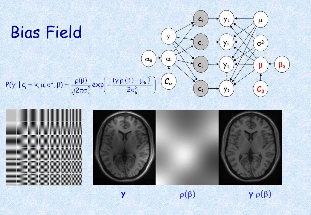 Bias Field ( ) y y ( ) y1y1 c1c1 y2y2 y3y3 c2c2 c3c3 C C yIyI cIcI