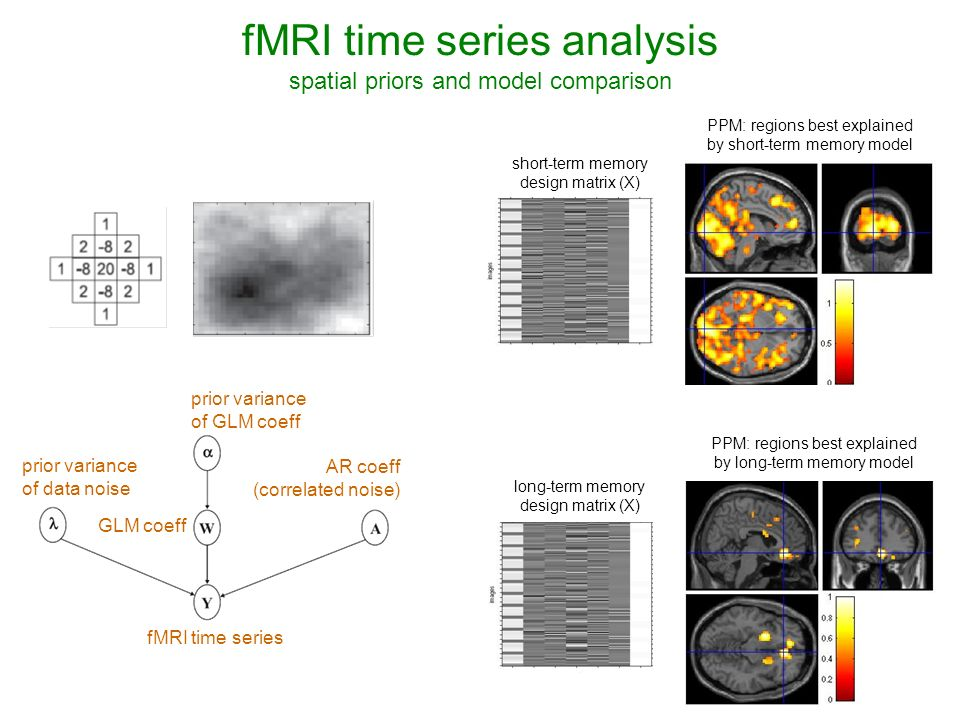 fMRI time series analysis spatial priors and model comparison PPM: regions best explained by short-term memory model PPM: regions best explained by long-term memory model fMRI time series GLM coeff prior variance of GLM coeff prior variance of data noise AR coeff (correlated noise) short-term memory design matrix (X) long-term memory design matrix (X)