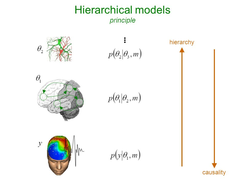 Decoding of brain images recognizing brain states from fMRI + fixation cross >> pace response log-evidence of X-Y sparse mappings: effect of lateralization log-evidence of X-Y bilateral mappings: effect of spatial deployment