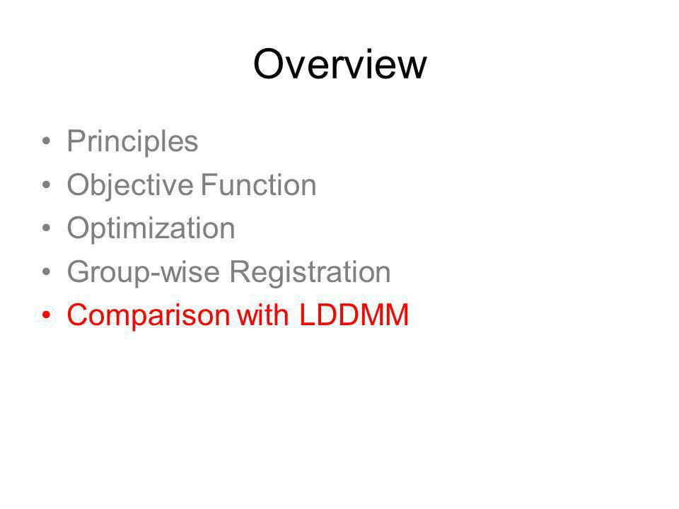 Overview Principles Objective Function Optimization Group-wise Registration Comparison with LDDMM