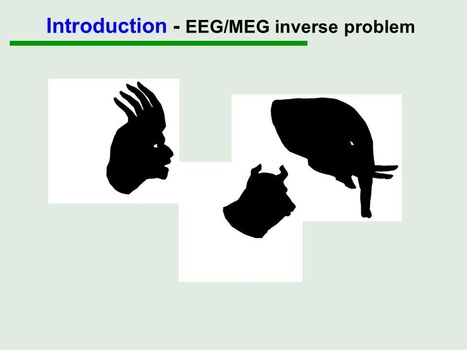 Introduction - EEG/MEG inverse problem
