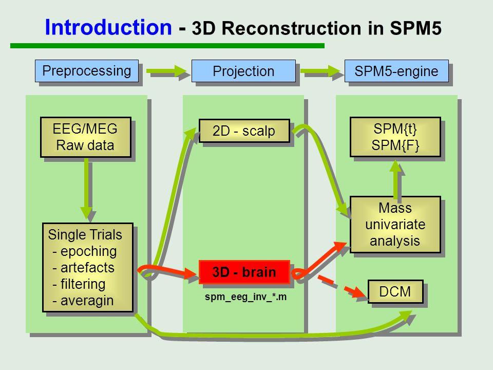 Preprocessing Projection SPM5-engine EEG/MEG Raw data Single Trials - epoching - artefacts - filtering - averagin Single Trials - epoching - artefacts
