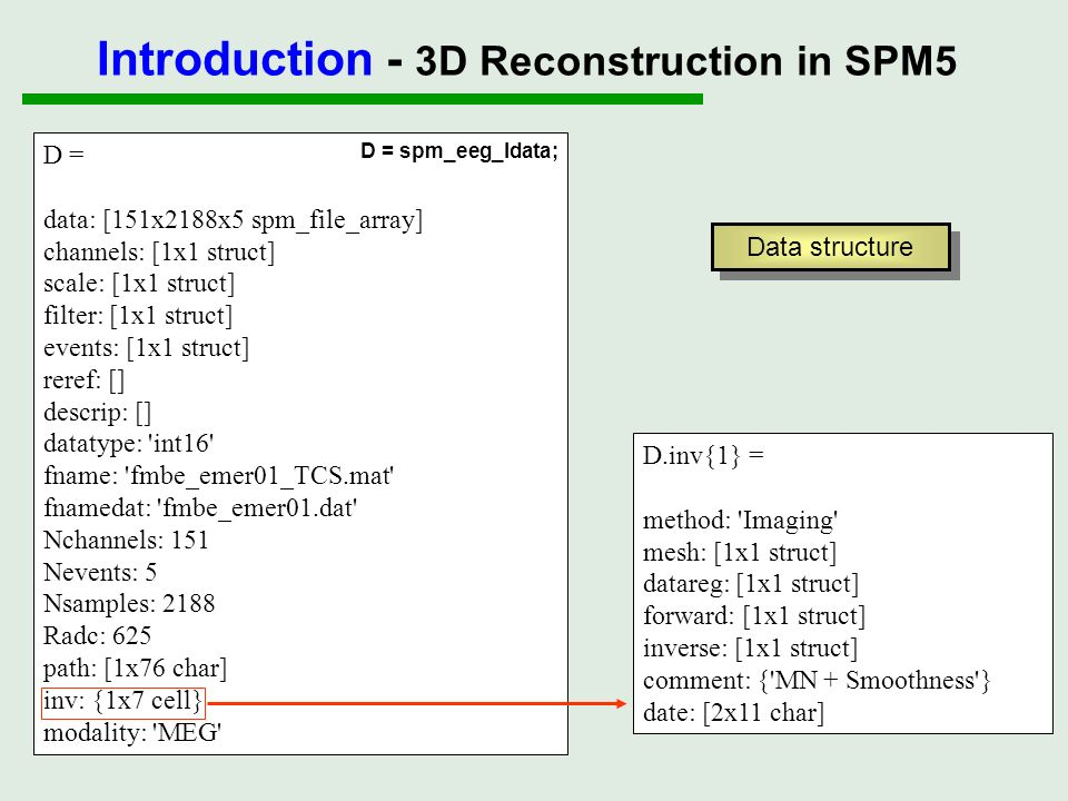 Outline Introduction - EEG/MEG inverse problem - 3D reconstruction in SPM5 I - Source model II - Data registration III - Head model and forward computation IV - Inverse estimation Demo