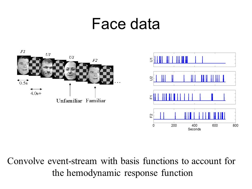 Face data Convolve event-stream with basis functions to account for the hemodynamic response function