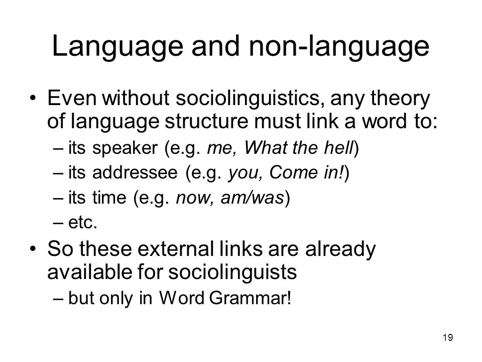 19 Language and non-language Even without sociolinguistics, any theory of language structure must link a word to: –its speaker (e.g. me, What the hell