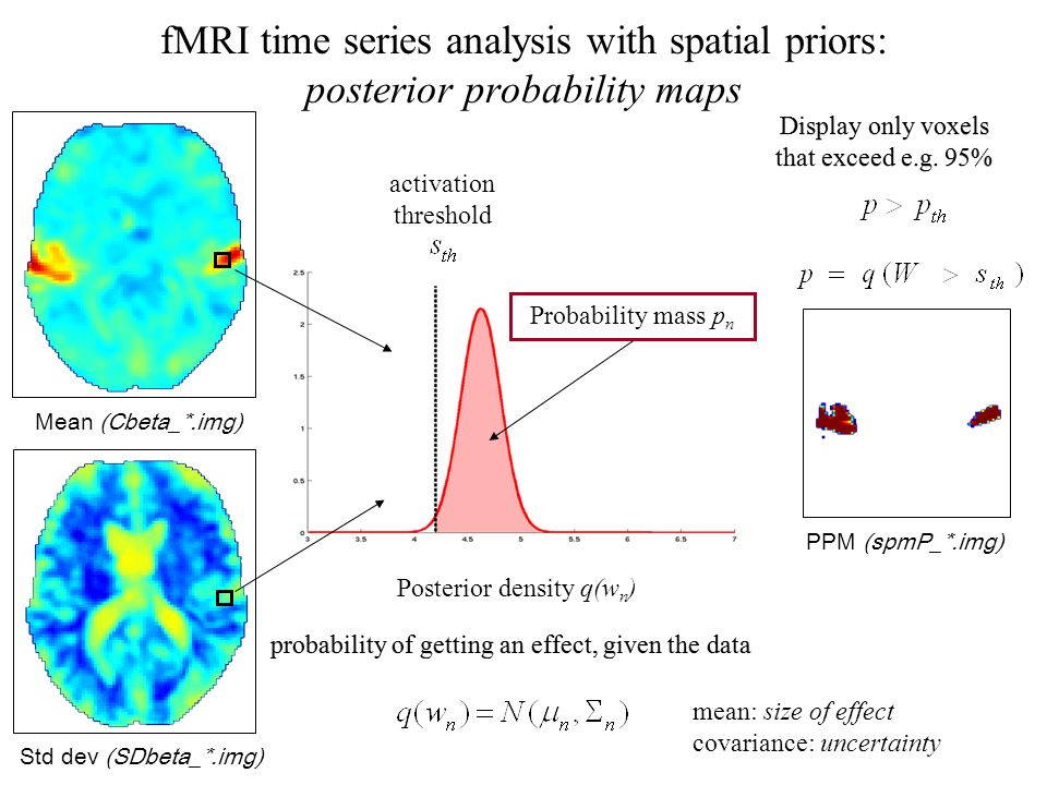 Mean (Cbeta_*.img) Std dev (SDbeta_*.img) PPM (spmP_*.img) activation threshold Posterior density q(w n ) Probability mass p n fMRI time series analys