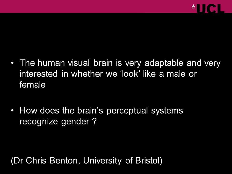 The human visual brain is very adaptable and very interested in whether we look like a male or female How does the brains perceptual systems recognize gender .
