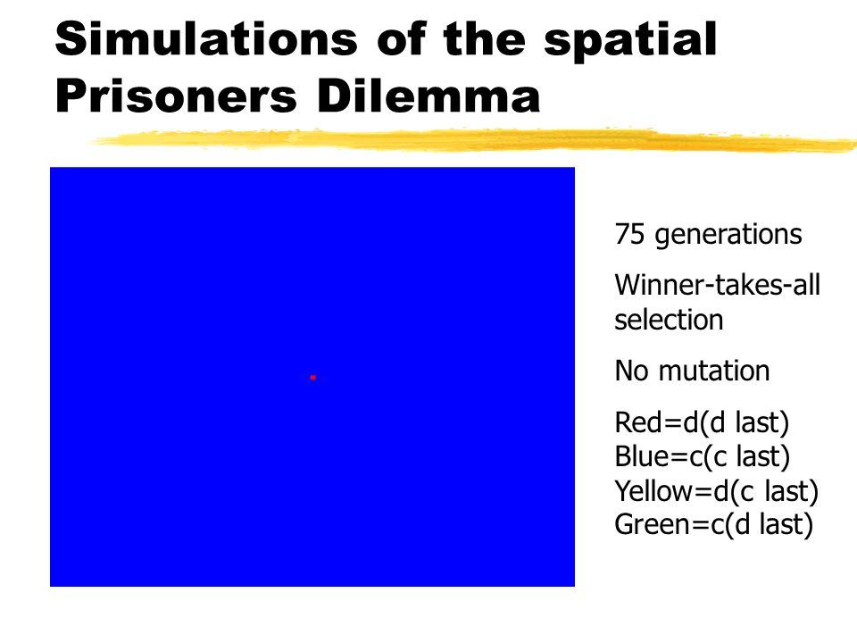 Simulations of the spatial Prisoners Dilemma 75 generations Winner-takes-all selection No mutation Red=d(d last) Blue=c(c last) Yellow=d(c last) Green
