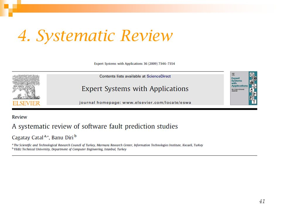 4. Systematic Review 41