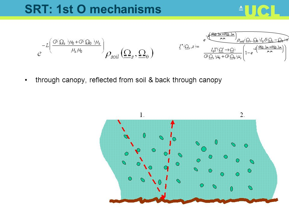 SRT: 1st O mechanisms through canopy, reflected from soil & back through canopy