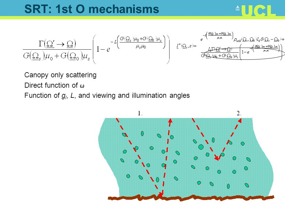 SRT: 1st O mechanisms Canopy only scattering Direct function of Function of g l, L, and viewing and illumination angles