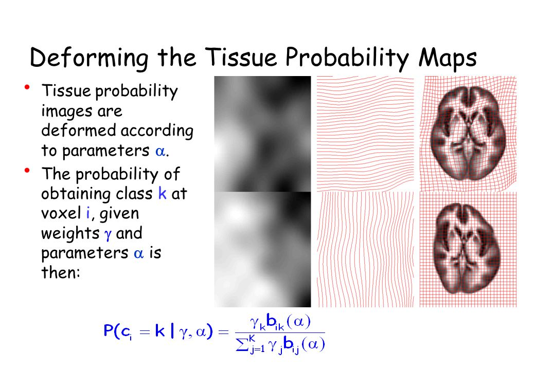 Deforming the Tissue Probability Maps Tissue probability images are deformed according to parameters. The probability of obtaining class k at voxel i,