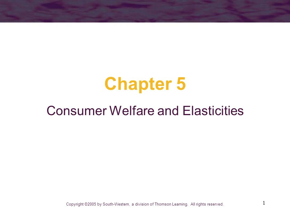 1 Chapter 5 Consumer Welfare and Elasticities Copyright ©2005 by South-Western, a division of Thomson Learning. All rights reserved.