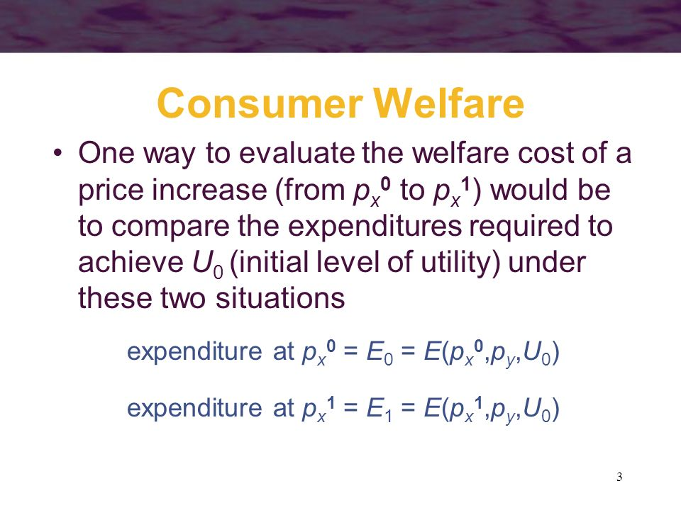 3 Consumer Welfare One way to evaluate the welfare cost of a price increase (from p x 0 to p x 1 ) would be to compare the expenditures required to ac