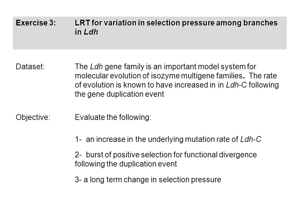 Exercise 3: LRT for variation in selection pressure among branches in Ldh Dataset:.