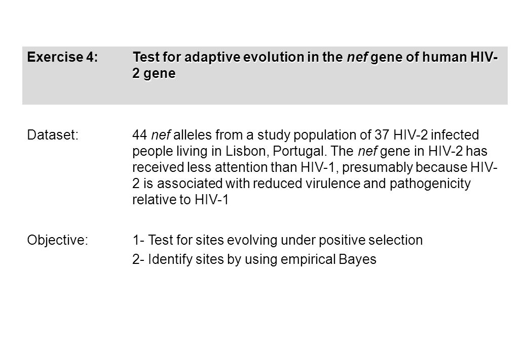 Exercise 4: Test for adaptive evolution in the nef gene of human HIV- 2 gene Dataset: 44 nef alleles from a study population of 37 HIV-2 infected people living in Lisbon, Portugal.