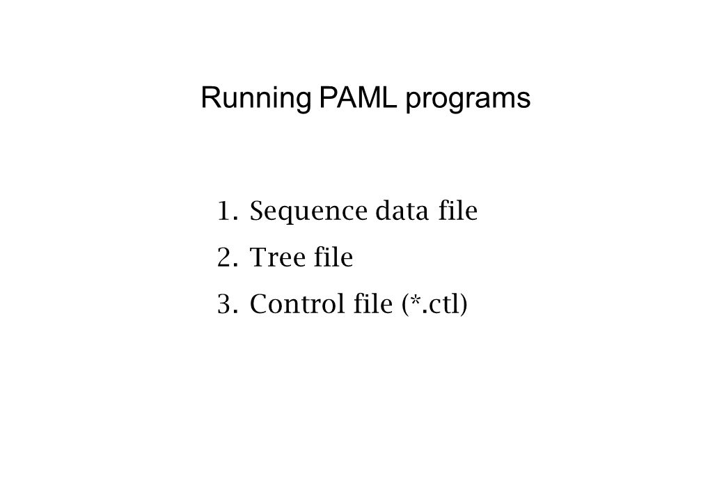 Running PAML programs 1.Sequence data file 2.Tree file 3.Control file (*.ctl)