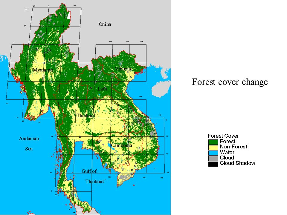 Forest cover change