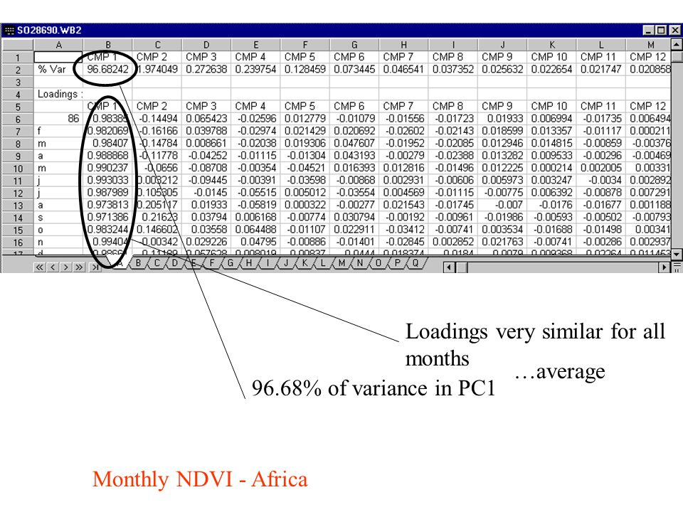 Monthly NDVI - Africa 96.68% of variance in PC1 Loadings very similar for all months …average