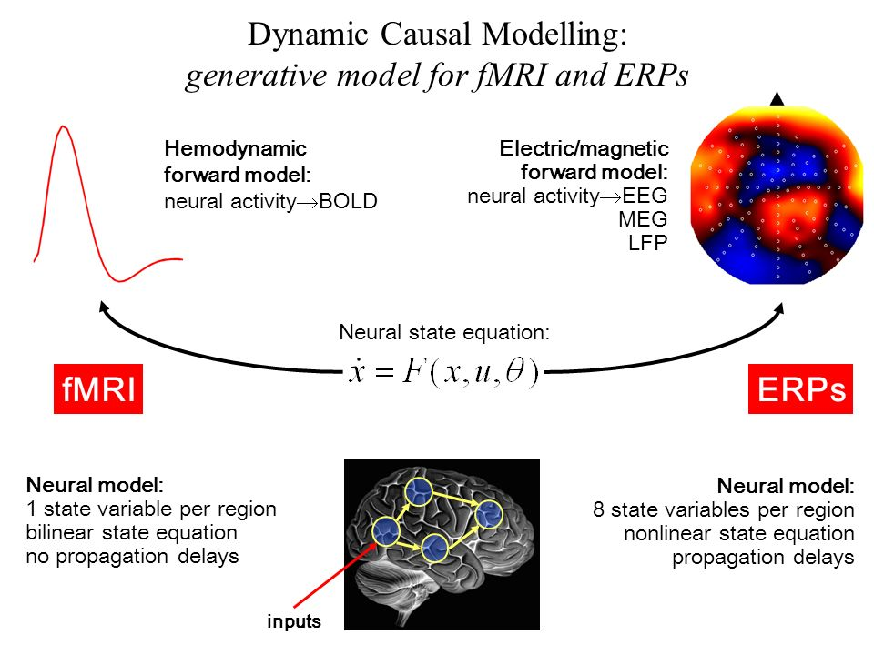 Neural state equation: Electric/magnetic forward model: neural activity EEG MEG LFP Neural model: 1 state variable per region bilinear state equation no propagation delays Neural model: 8 state variables per region nonlinear state equation propagation delays fMRIERPs inputs Hemodynamic forward model: neural activity BOLD Dynamic Causal Modelling: generative model for fMRI and ERPs