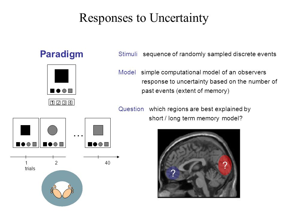 Responses to Uncertainty Paradigm Stimuli sequence of randomly sampled discrete events Model simple computational model of an observers response to uncertainty based on the number of past events (extent of memory) Question which regions are best explained by short / long term memory model.