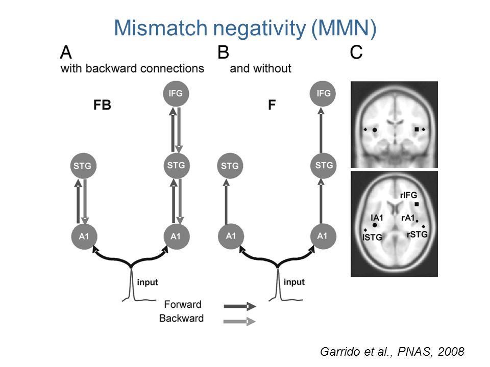 Mismatch negativity (MMN) Garrido et al., PNAS, 2008