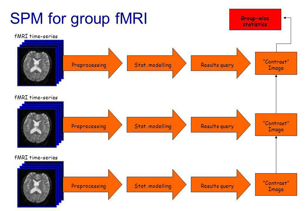SPM for group fMRI fMRI time-series PreprocessingStat. modelling spm T Image Results query fMRI time-series PreprocessingStat. modelling Contrast Imag