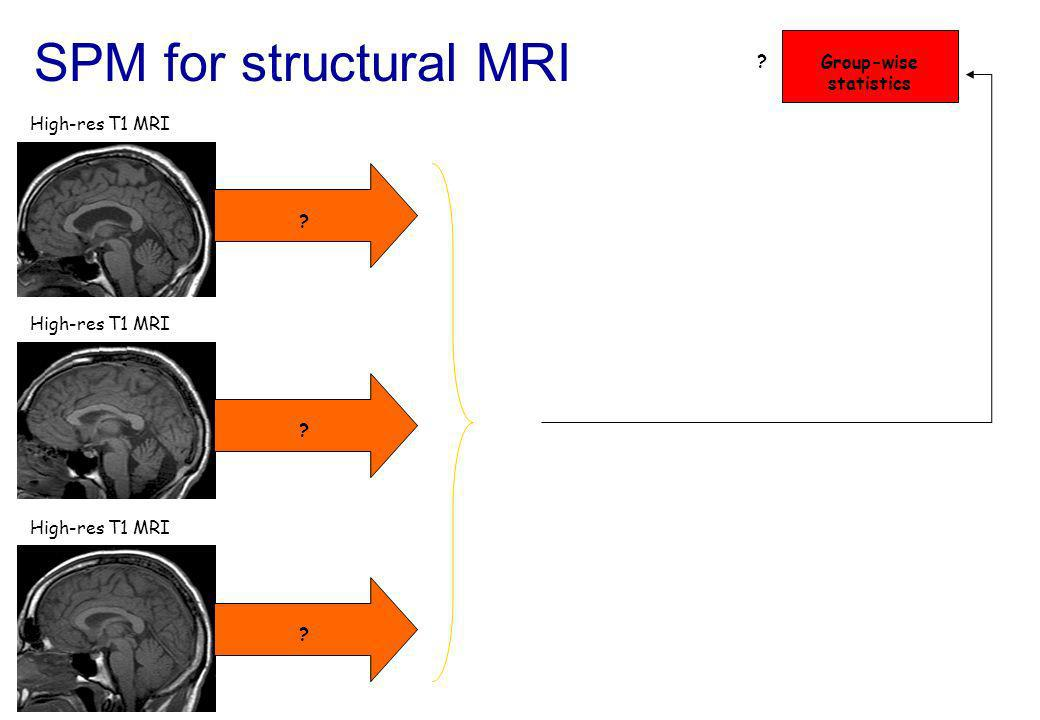 SPM for structural MRI High-res T1 MRI Group-wise statistics ? ? ? ? High-res T1 MRI