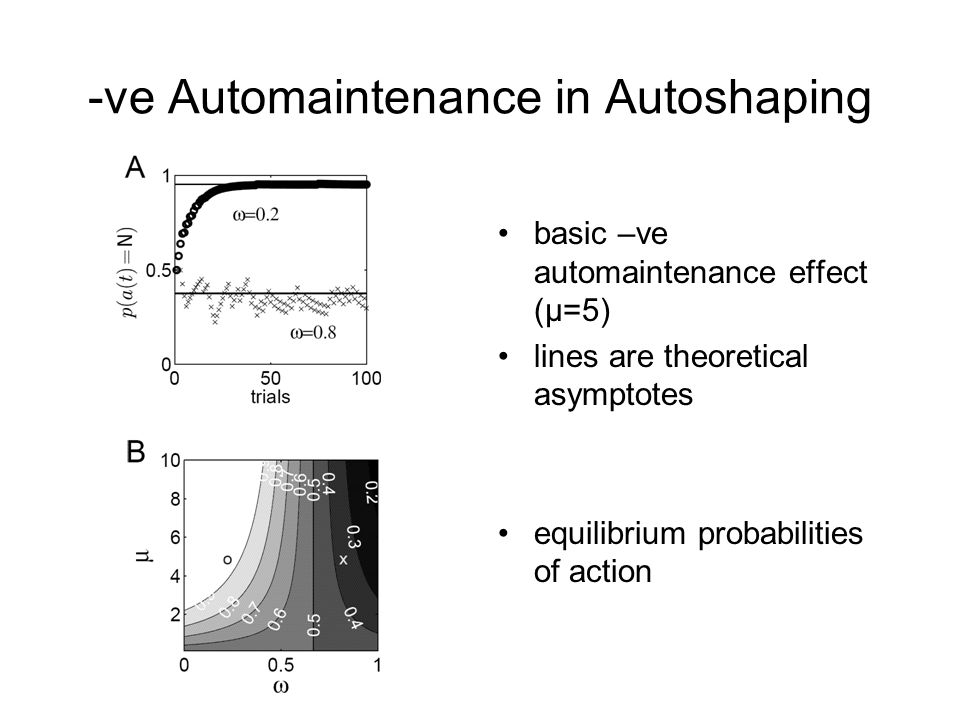 -ve Automaintenance in Autoshaping basic –ve automaintenance effect (μ=5) lines are theoretical asymptotes equilibrium probabilities of action