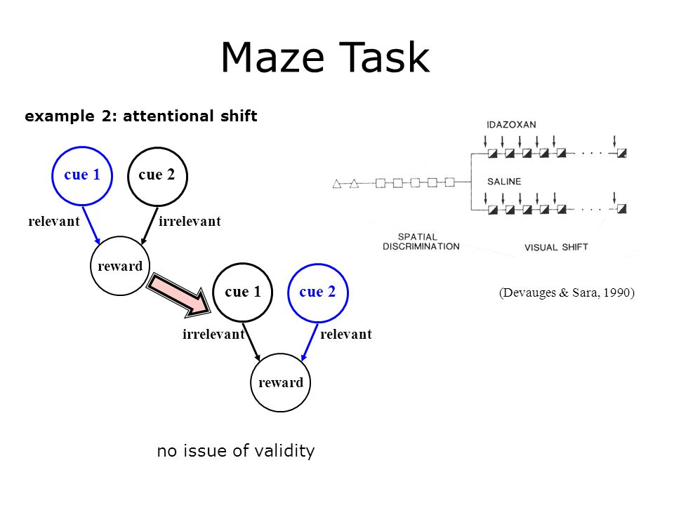 Maze Task example 2: attentional shift reward cue 1cue 2 reward cue 1cue 2 relevant irrelevant relevant (Devauges & Sara, 1990) no issue of validity
