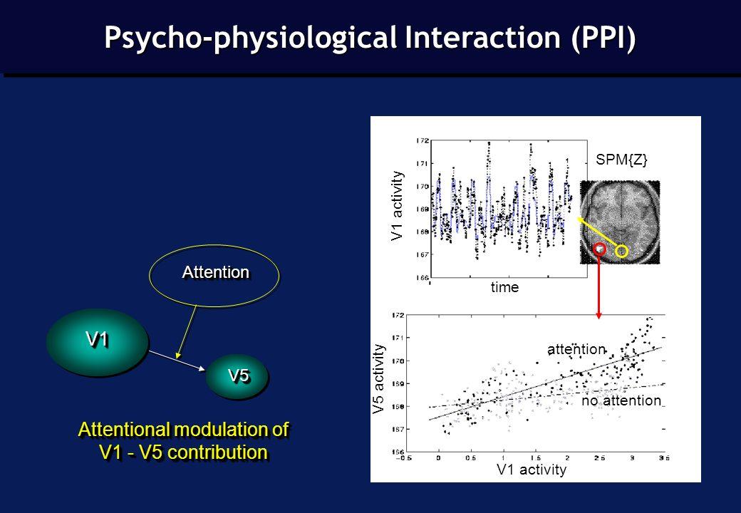SPM{Z} Attentional modulation of V1 - V5 contribution Attentional modulation of V1 - V5 contribution AttentionAttention V1V1 V5V5 attention no attention V1 activity V5 activity time V1 activity Psycho-physiological Interaction (PPI)